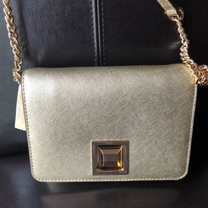 Michael Kors Gold Sm Clutch/Crossbody Bag NWT